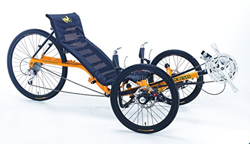 24 Speed Adult Recumbent Tricycle