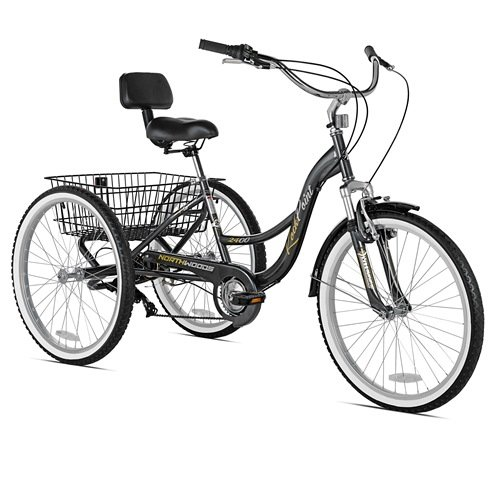 My Top Favorite Best Tricycles For Adults