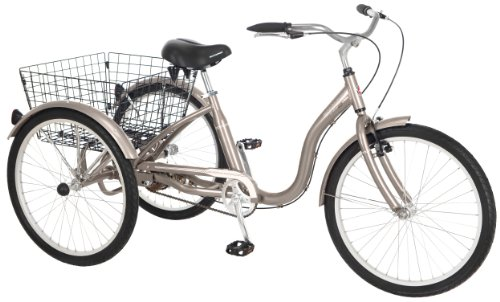 Schwinn Meridian Tricycle (26-Inch Wheels), Dark Silver