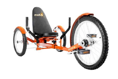 Cheap Recumbent Trike