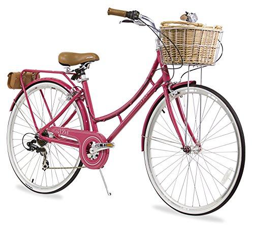 Cute Retro Style 7-Speed Dutch Bike