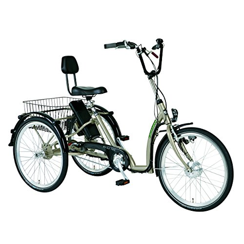 Comfort Electric Tricycle for Adults