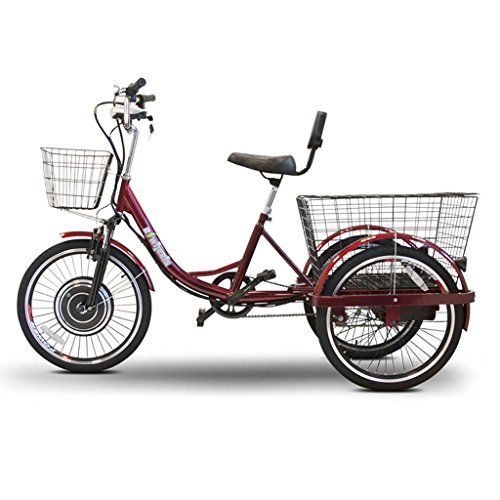 electric trike for adult